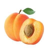 gf-img-apricot